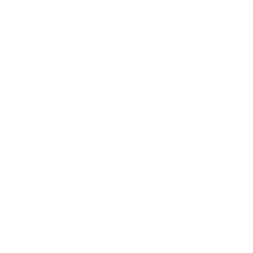 The Original Bowl Company